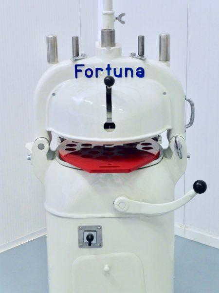 Fortuna 4