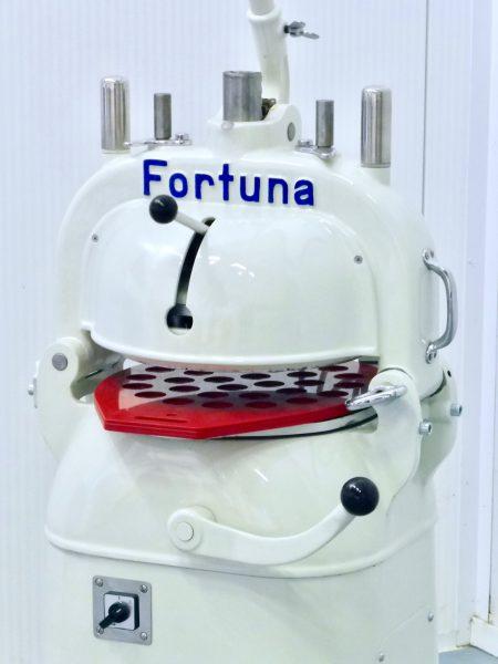 Fortuna 3